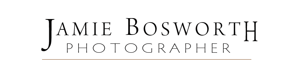 Bosworth Studio