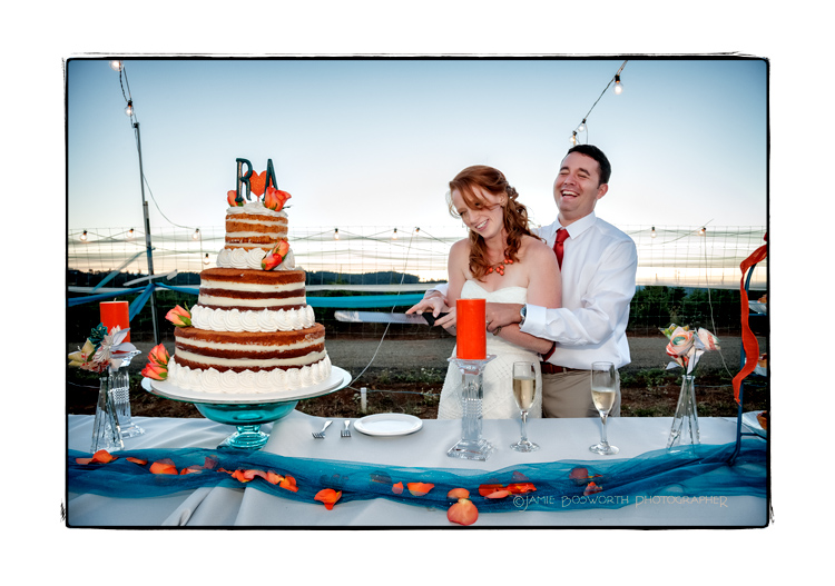Pumpkin-Cake-at-J-Wrigley-Vineyards-Jamie-Bosworth-Photographer