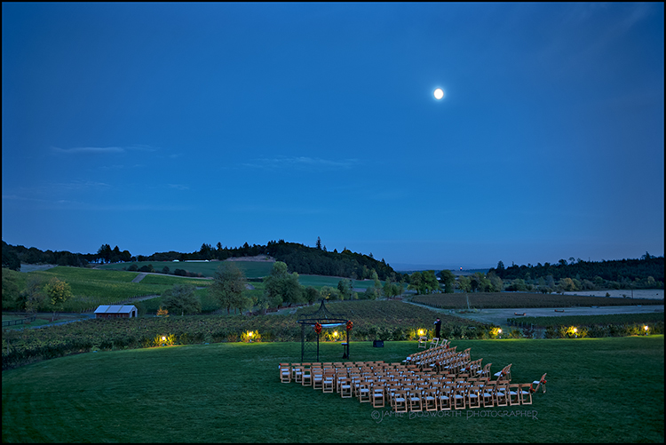 Zenith-Vineyard-Wedding-Jamie-Bosworth-Photographer